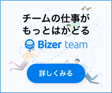 Bizer team